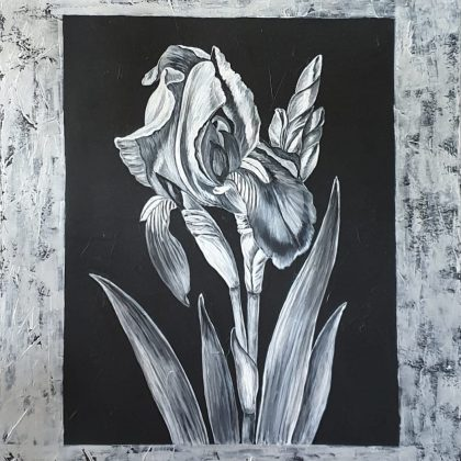painting of an Iris Flower